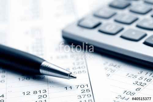 LA PARTITA IVA: Gestione Fiscale