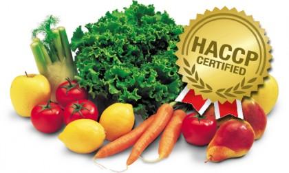 HACCP AREZZO/FIRENZE/EMPOLI/PRATO/LUCCA – Formazione Obbligatoria per Titolari di Imprese Alimentari – Responsabile dei piani di Autocontrollo di Attività Alimentari Complesse