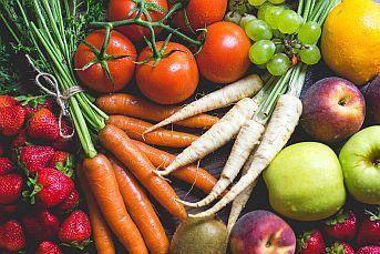 HACCP GROSSETO – Formazione Obbligatoria per Addetto ad Attività Alimentari Complesse